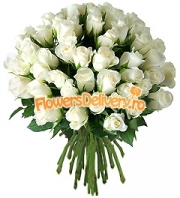 Bouquet of 49 white roses