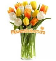 Pastel tulips bouquet